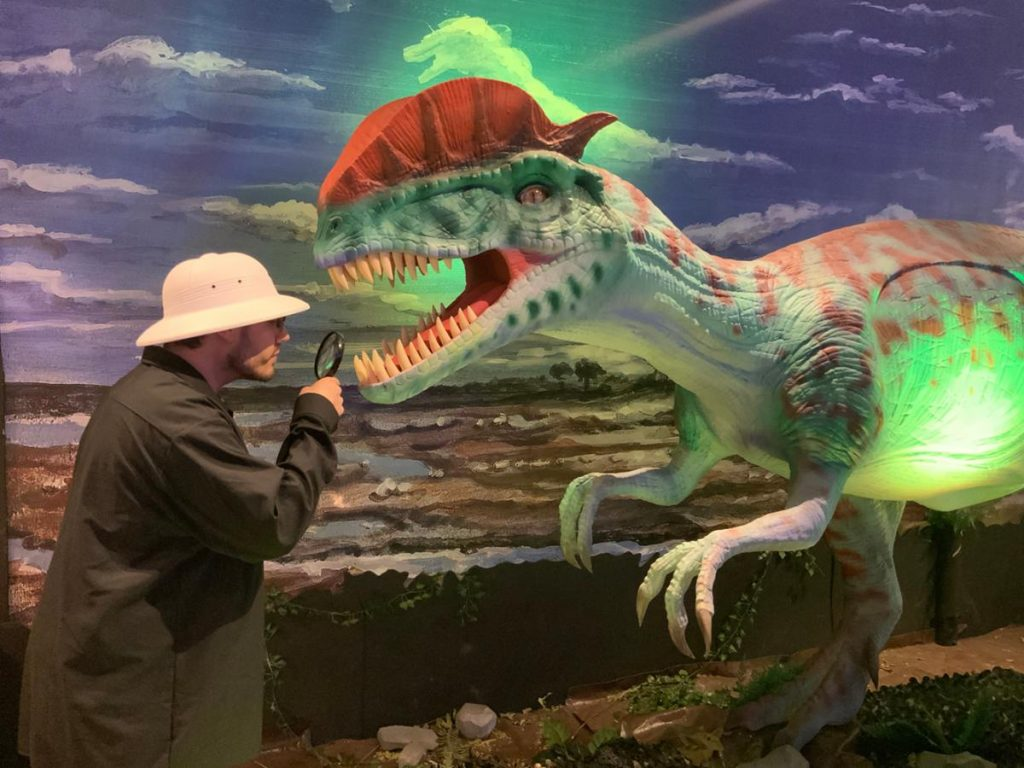 a man in a jacket observing a dinosaur display