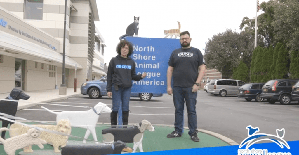 a man and women standing in front of a pet league building